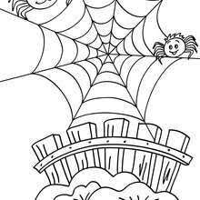 Spider On Its Web Coloring Pages Hellokids Com Spider Web Coloring Page