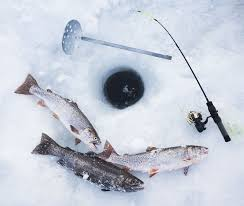 Spanish Flag Fish How To Get Started In Ice Fishing How To Ice Fish