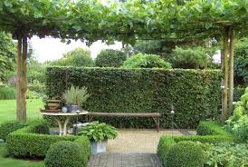 pergola planting ideas tags amazing modern garden pergola