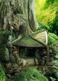 forest house fairy tale forest house netherland world for travel