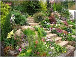 backyards bright tropical backyard garden setting stock image
