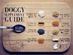 the 5 best homemade dog food recipes to keep your dog healthy