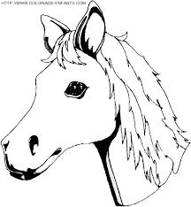 coloriage cheval tete de poulain titus pinterest coloriage