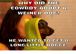 Wiener Dog Meme - 25 best memes about ssohpkc ssohpkc memes