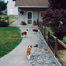 Landscaping Ideas For Backyard With Dogs by Q U0026a More Help For Dog Friendly Gardens Sunset