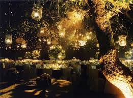tree of hanging lights pictures photos and images for