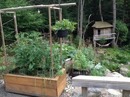 Intensive Gardening Layout by Vegetable Garden Layout Mistakes To Avoid Garden Culture Magazine