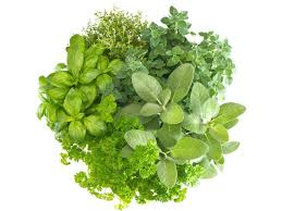 health benefits of herbs u0026 spices organic facts