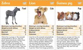 top trumps baby animals onestopenglish