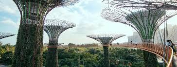 Botanical Garden Internship Internship Abroad Social Cultural Networking Activities Careerup