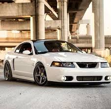mustang cobra accessories best 25 2004 ford mustang ideas on ford mustang gt500
