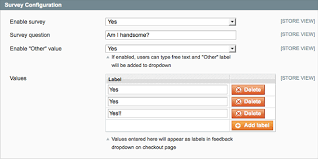 customer satisfaction survey question magento extension
