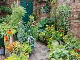 Patio Container Garden Ideas How To Plant A Patio Container Garden Hgtv