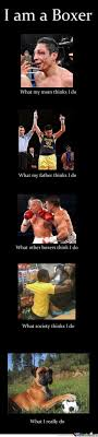 Boxing Memes - boxing memes best collection of funny boxing pictures