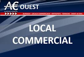 bureaux locaux com immobilier d entreprise à nantes local commercial location de