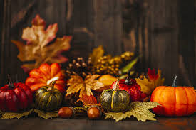 thanksgiving pictures images and stock photos istock