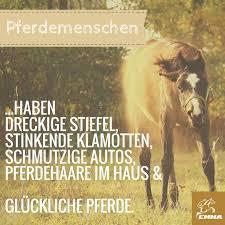 pferdesprüche 48 best pferdesprüche images on quotes