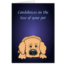 dog condolences dog condolences greeting cards zazzle co nz