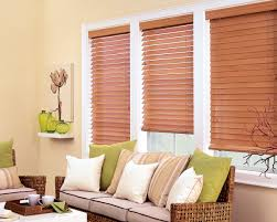 Blinds And Shades Home Depot Tips Outdoor Shades Home Depot Blackout Cordless Roman Shade