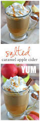 thanksgiving drinks alcohol best 25 fall drinks ideas on pinterest fall drinks alcohol