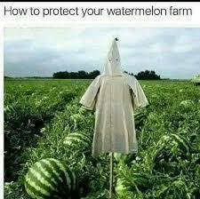 Racist Memes - the best racist memes memedroid