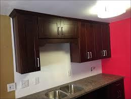 kitchen elegant kitchen cabinets kitchen cabinet brands basic