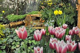 Average Cost Of Landscaping by Download Average Landscaping Prices Garden Design