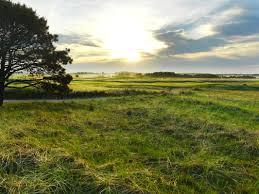 miacomet golf club home