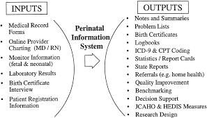 perinatal information systems for quality improvement visions for