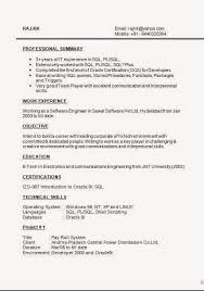 resume exles objective for any position trigger help writing cv sle template excellent curriculum vitae cv