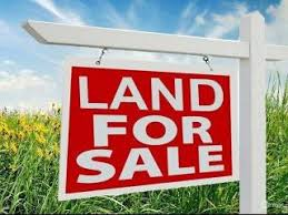 farm land for sale at adaklu near ho