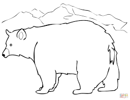 black bear coloring page free printable coloring pages