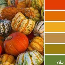 knowing fall color palette u2022 dutchlabelshop blog