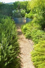 galvanized tub ideas landscape modern with metal outdoor planter