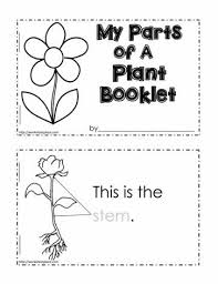 label a plant worksheet free worksheets library download and