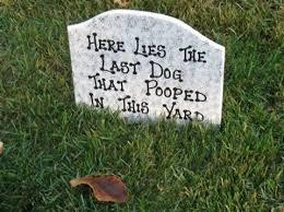 the 25 best tombstone sayings ideas on pinterest halloween