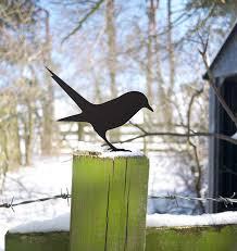 bird seeks worm garden ornament yard