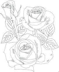 imagenes para colorear rosas colorear rosas para rosas para colorear dia madre andu info