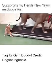 New Years Gym Meme - 25 best memes about new year resolution new year resolution memes