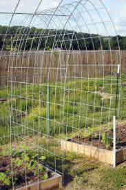 the best trellis designs organic gardening my favorite things