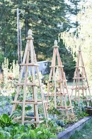 Vertical Garden Trellis - vertical garden supports centsational style