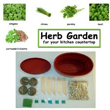 Countertop Herb Garden by Herb Kitchen Garden Kit Everything Needed For Growing Countertop