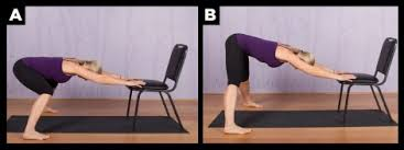 Chair Yoga Poses Top Chair Yoga Poses For Seniors Spry Living