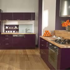 cuisine l internaute l internaute cuisine luxe meuble de cuisine delinia position type