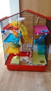 Hamster Cages Petsmart 30 Best Hamster Cages Images On Pinterest Hamster Cages