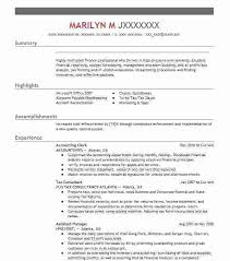 sample resume summary lukex co