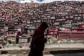 canap駸 en soldes 中國藏區著名佛學院僧尼住房被拆 紐約時報中文網