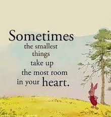 winnie the pooh sayings best winnie the pooh quotes best quotes facts and memes