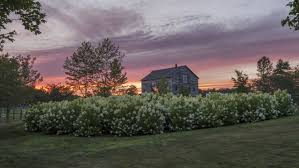 Carolina Kitchen Rhode Island Row This Sweeping Farm In Rhode Island Is The Ultimate Summer Getaway