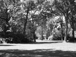 Discount Country Home Decor Black And White Landscape Photography 6 Free Wallpaper Loversiq